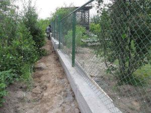 Забор для дачи из сетки рабицы